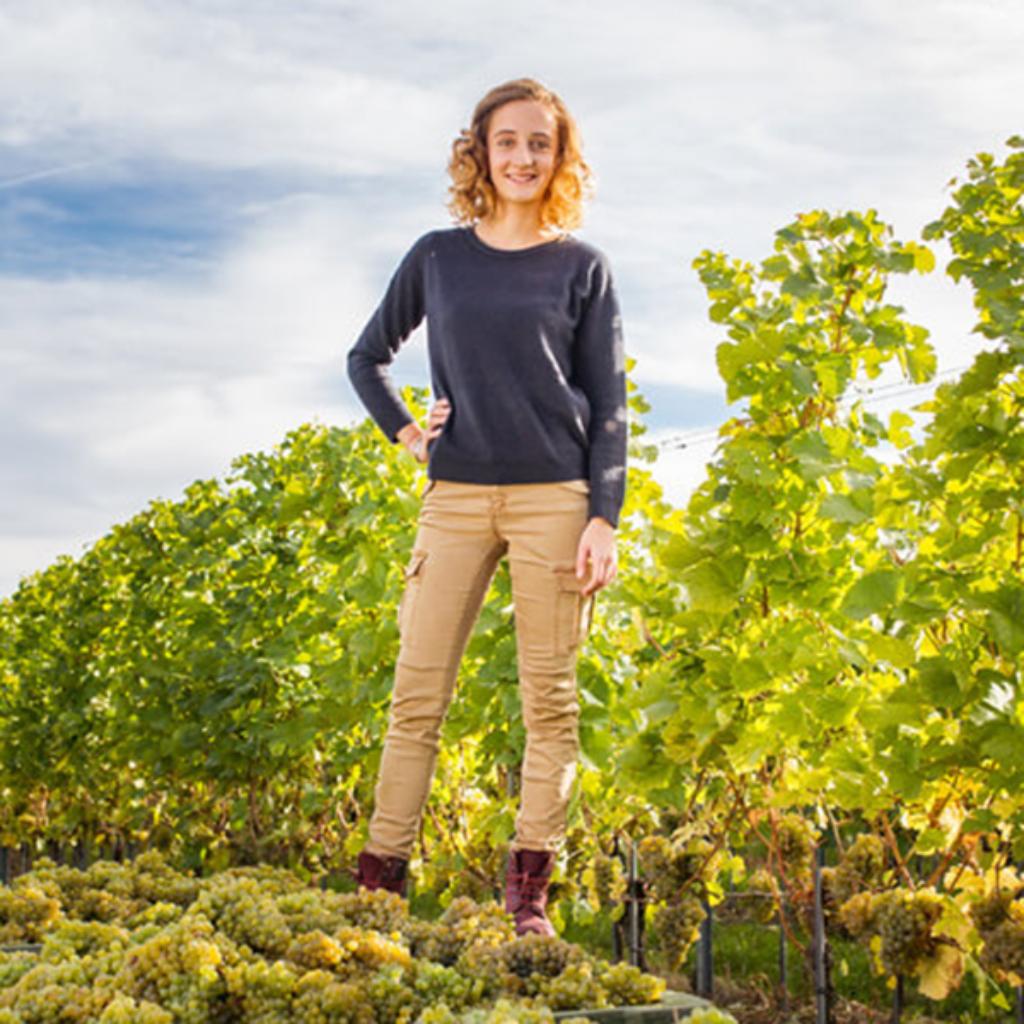 Vinodea | Weinhandlung | Winzerinnen | Kathrin Brachmann
