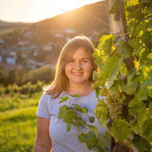 Vinodea | Weinhandlung | Weine von Winzerinnen | Shop | Johanna Müllner Winzerhof Müllner